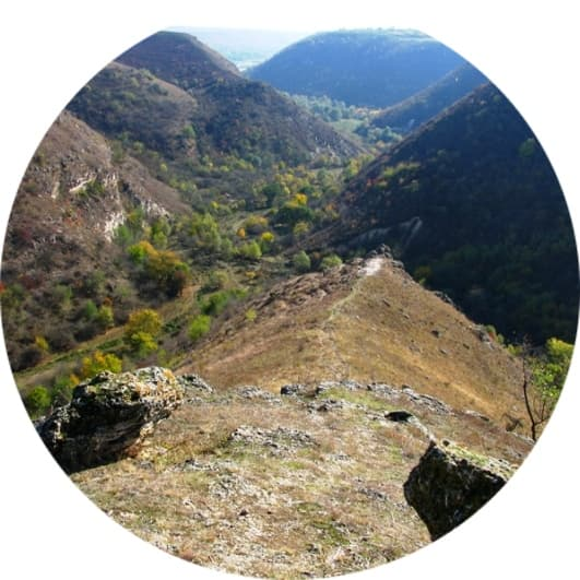 гора Носорог