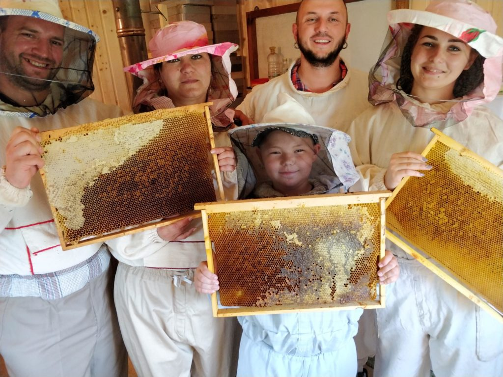 пасека пчел